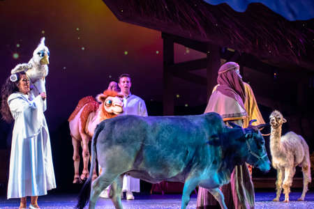 Orlando, Florida. December 30, 2019. O Wondrous Night Show is a greatest story with carols, puppets and live animals.at Seaworld (209)