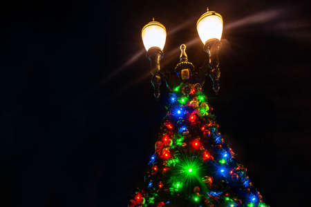 Orlando, Florida. January 03, 2020, Top view of Christmas tree and street light at Hollywood Studios (176)