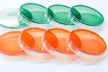 SS agar (Salmonella Shigella Agar) and TCBS Agar (Thiosulfate Citrate Bile Salts Sucrose Agar)