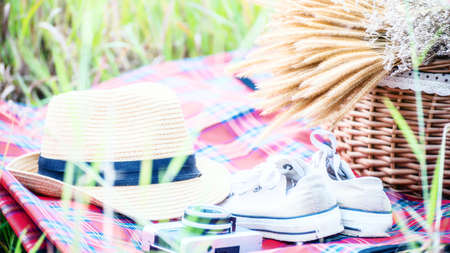picnic party in the meadow; select and soft focus. Stock Photo