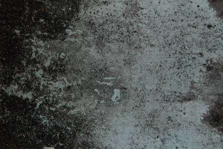 mould: black mould stains on the old white wall