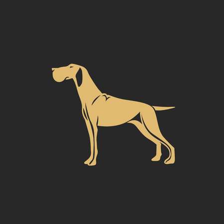 golden hunting dog with shadow vector illustration