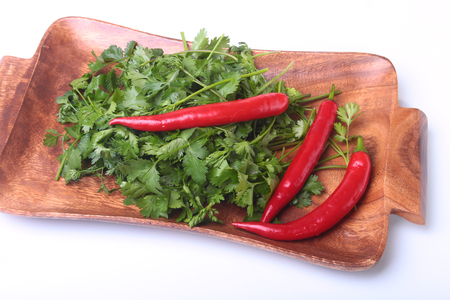 flavouring: Fresh green cilantro, coriander leaves and chili pepper on wooden board. Stock Photo