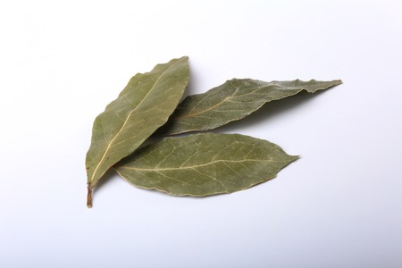 Aromatic dried bay leaves on white background.