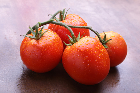 Tomato branch with Very fresh and delicious red tomatoes Stok Fotoğraf