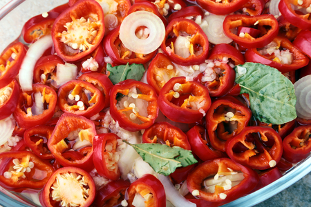 Slices Red hot chilli pepper, garlic, onion, salt and vinegar Fresh organic vegetables for salad.