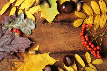 Frame of Autumn maple leaves on aged wood with copy space. Mockup for seasonal offers and holiday post card, top view.