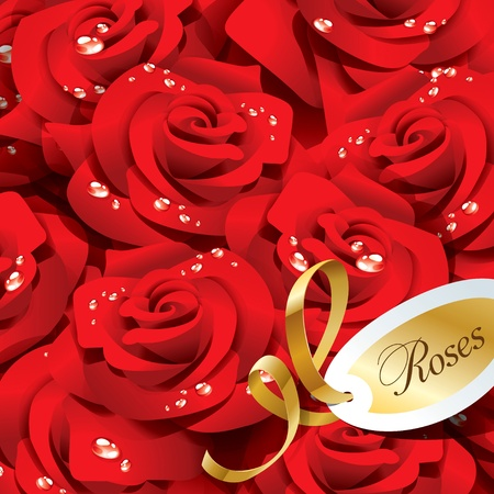 dewdrops: Background from red roses in dewdrops with golden ribbon and paper sticker.
