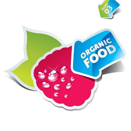 Icon raspberry with an arrow by organic food. Vector illustration. Stock Vector - 10593787