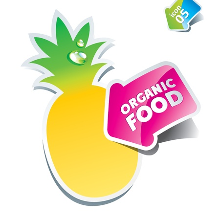 Icon pineapple with an arrow by organic food. Vector illustration. Stock Vector - 10593778