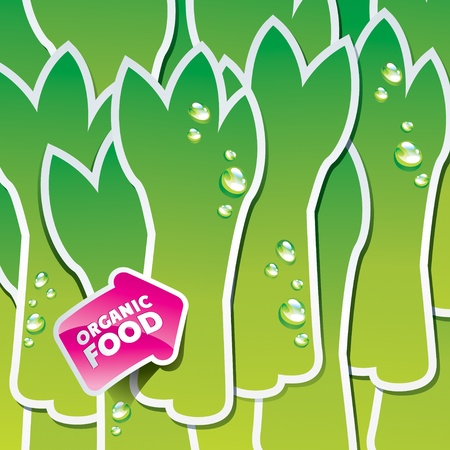 Background from asparagus with an arrow by organic food. Vector illustration. Vector