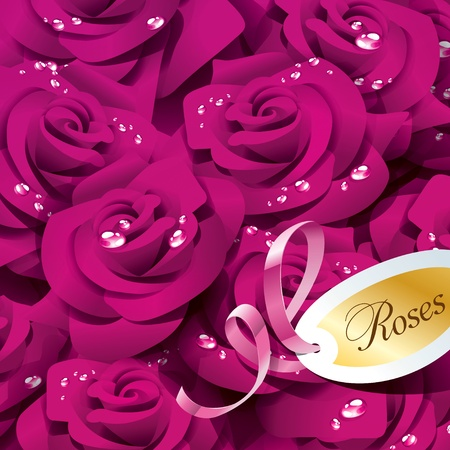 Background from violet roses in dewdrops with pink ribbon and paper sticker. Vector illustration.