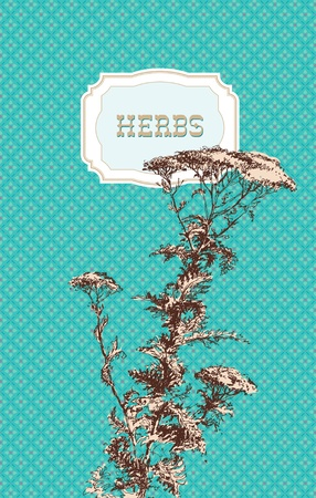 yarrow: Yarrow herb (Achillea millefolium). A sketch made by a pen on a turquoise patterned background. Vector illustration. Illustration