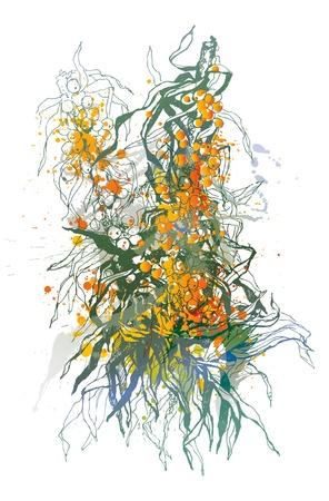 plantas medicinales: Bayas de espino de mar. Un esbozo colorido hecho por una pluma con manchas y sprays sobre un fondo blanco. Ilustración vectorial.