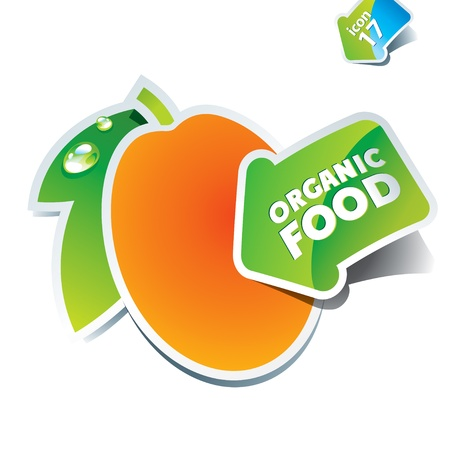 apricot: Icon apricot with the arrow by organic food. Vector illustration.