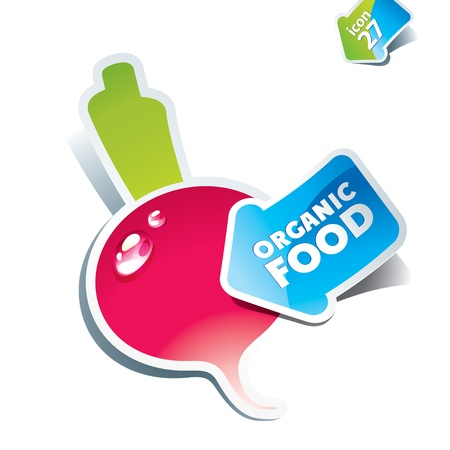 Icon radish with arrow by organic food. Vector illustration. Stock Vector - 10647708