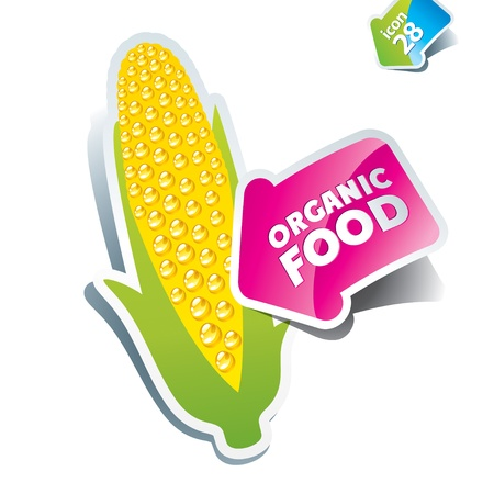 maize: Icon corn an arrow by organic food. Vector illustration.