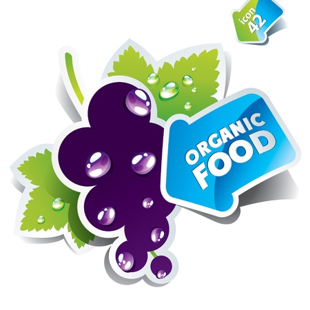currants: Icon currant with arrow by organic food. Vector illustration Illustration