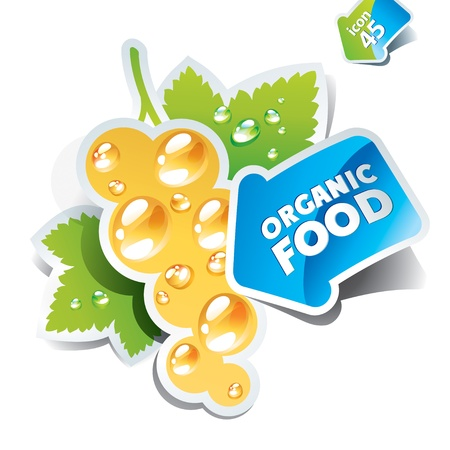 Icon currant with arrow by organic food on a white background