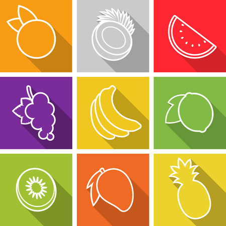 Flat design icons. Set of fruit. Vector illustration. Vector
