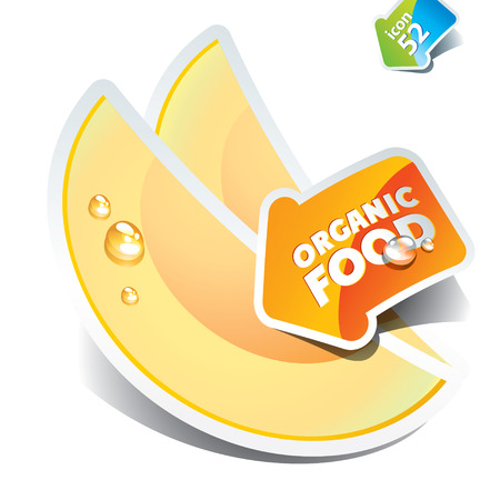 Icon of sliced melon with the arrow by organic food. Vector illustration. Çizim