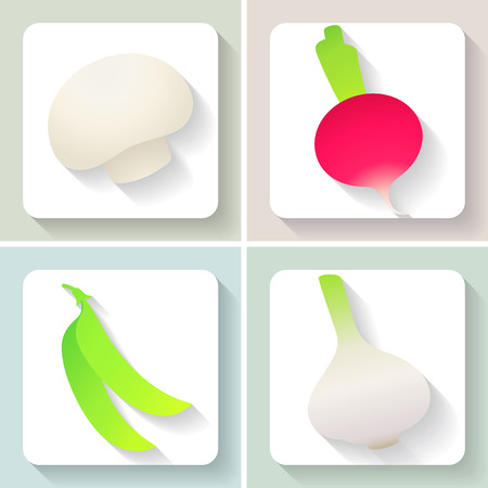 Set of flat design vegetable icons. Vector