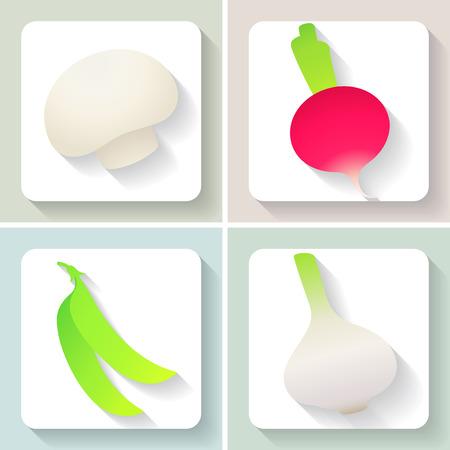 champignon: Set of flat design vegetable icons. Illustration