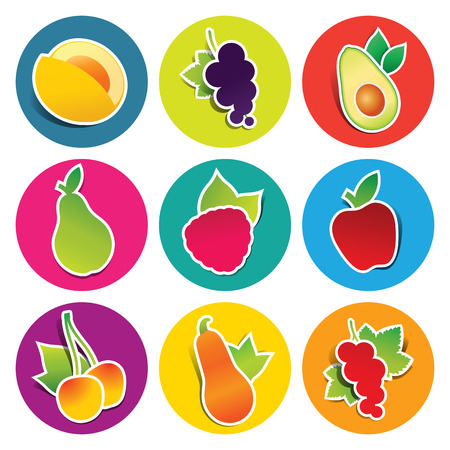Set of fruit icons in the circles: apple, avocado, currant, cherry, pear, pumpkin, raspberry. Vector illustration.