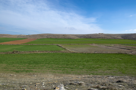 aragon: The field in Teruel