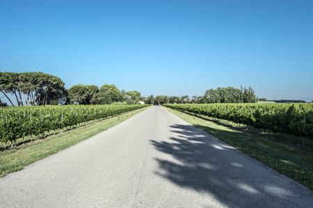camino: Camino de Balaguer por la ruta Stock Photo