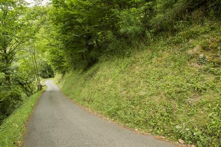 camino: Camino de Santiago from Saint Jean Pied de Port to Roncesvalles via Valcarlos