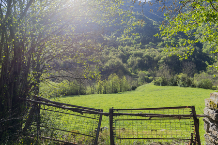 ordesa: Landscape between broto and torla in the Pyrenees of Huesca