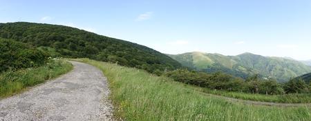 The road to Santiago between Valcarlos and Roncesvalles, Spain Фото со стока