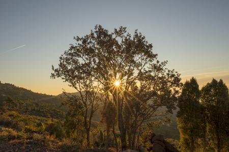 Sunrise in the mountains of the palms desert, Spain 版權商用圖片