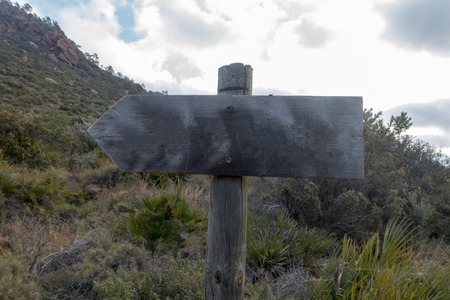 Wooden sign with wooden shape in the forest, Spain Banco de Imagens