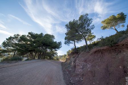 The desert of the palms in benicasim, Costa azahar, Spain