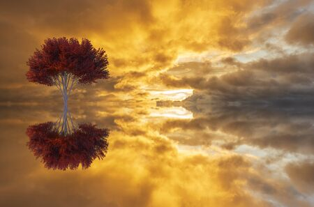 A tree and its reflection in the lake at dawn, manipulation