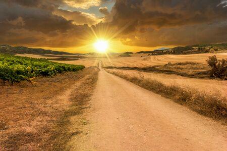 The sun at sunset on the road to Santiago de Navarra, Spain Zdjęcie Seryjne