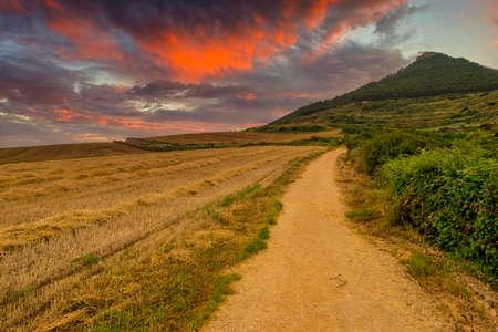 The Camino de Santiago in Navarra at sunset, Spain Reklamní fotografie