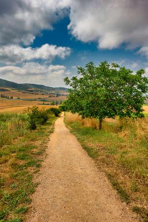 The Camino de Santiago in Navarra on a clear day, Spain Reklamní fotografie