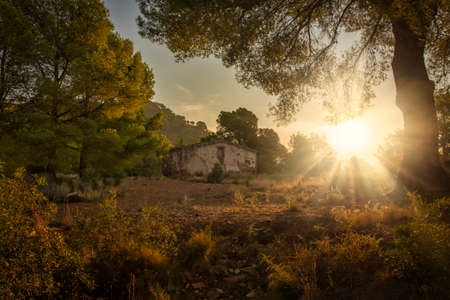 The sunset sun in the forest and an abandoned house, Spain