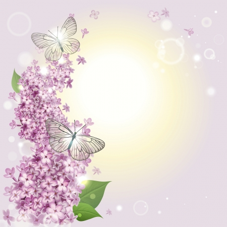 greeting card with a lilac and butterflies Vector