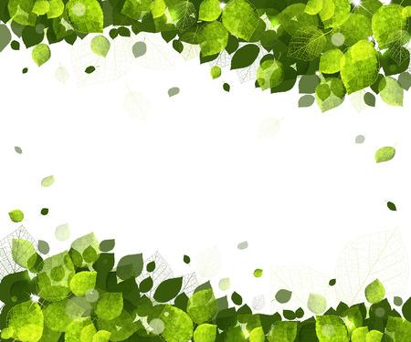 reforestaci�n: fondo soleado de verano de hojas verdes Vectores