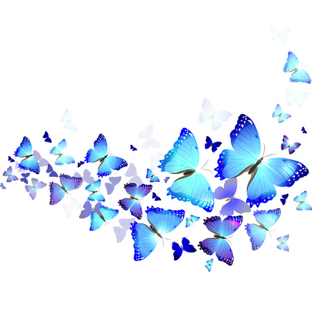 background of beautiful blue butterflies