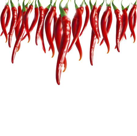 chiles picantes: guirnalda de chiles rojos Vectores