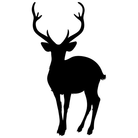 male animal: deer silhouette on a white background