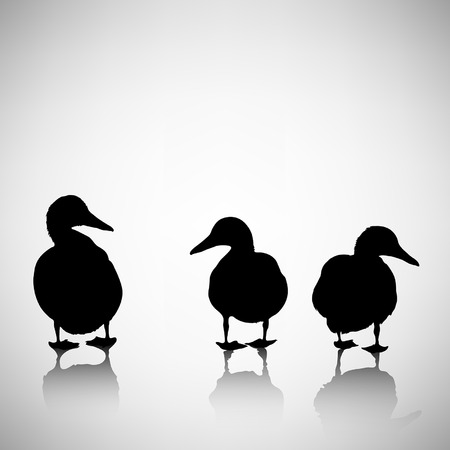 duck: silhouettes of ducks on a light background with reflection Illustration
