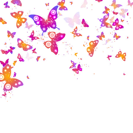 butterflies flying: colorful flying butterflies on a white background Illustration