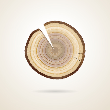 split level: tree rings on a tree trunk sawing Illustration