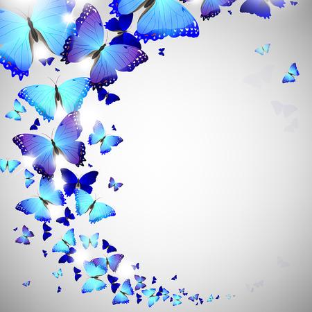 blue butterfly on a light background Illustration